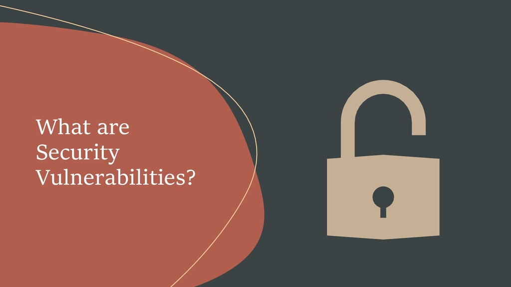 What are Security Vulnerabilities?