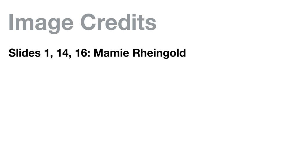 Image Credits Slides 1, 14, 16: Mamie Rheingold