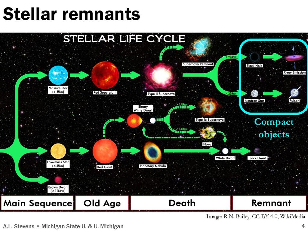Stellar remnants A.L. Stevens • Michigan State ...