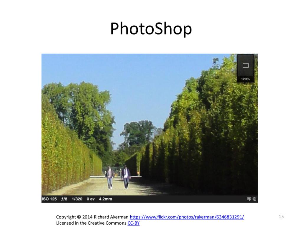 PhotoShop 15 Copyright © 2014 Richard Akerman h...