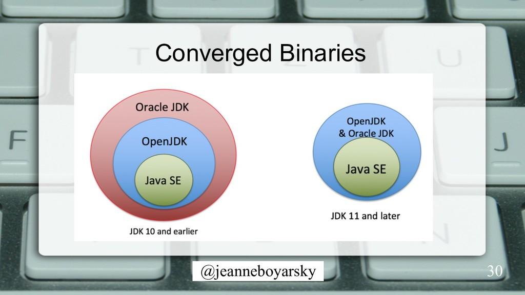 @jeanneboyarsky Converged Binaries 30
