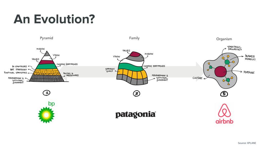 An Evolution? Pyramid Family Organism Source: X...