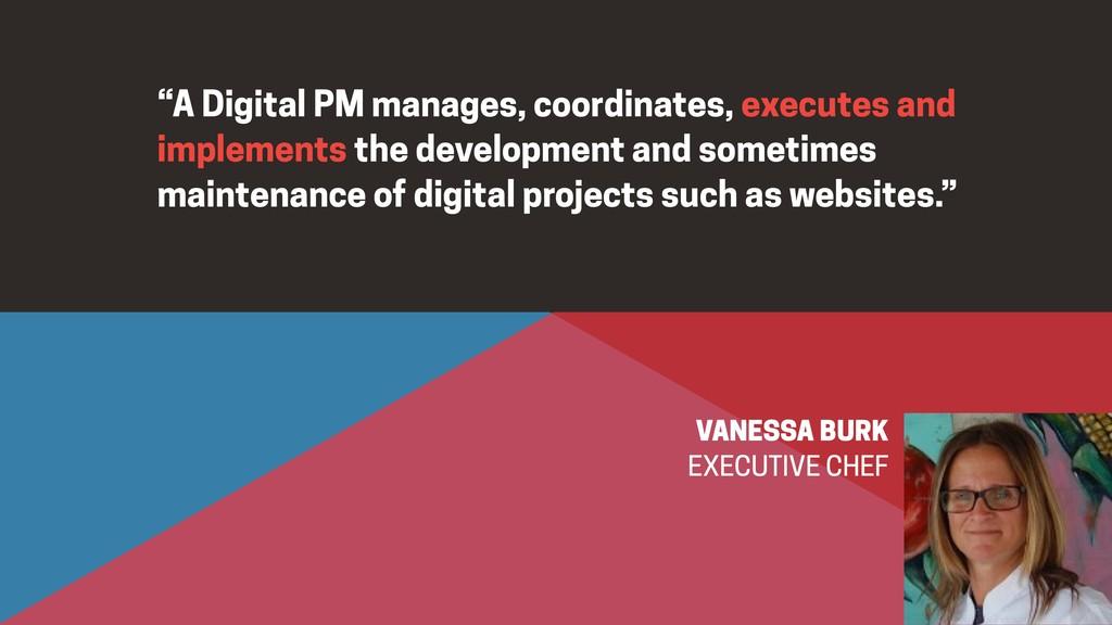 """A Digital PM manages, coordinates, executes an..."