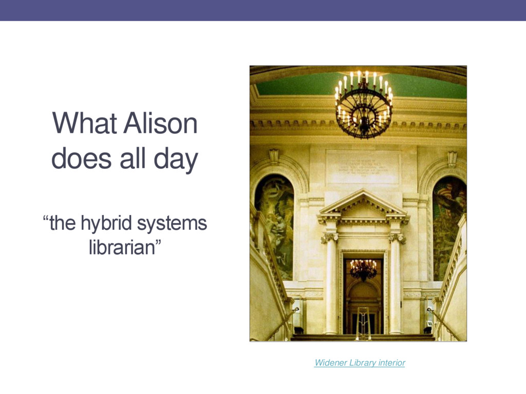 "What Alison does all day ""the hybrid systems li..."