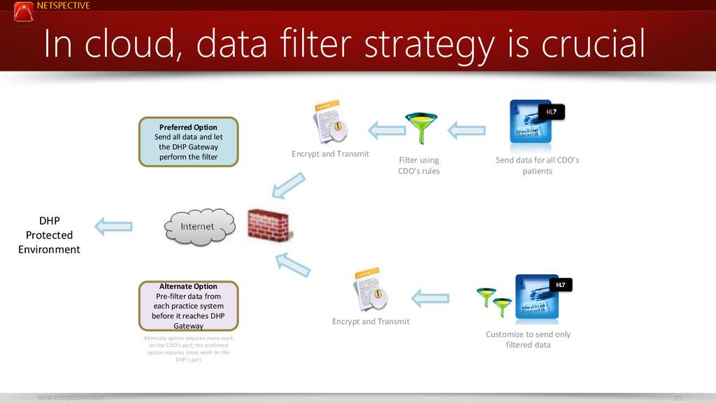 NETSPECTIVE www.netspective.com 25 In cloud, da...