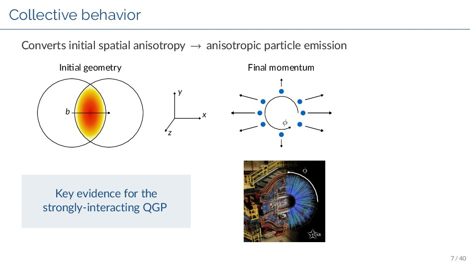 Collective behavior Converts initial spatial an...