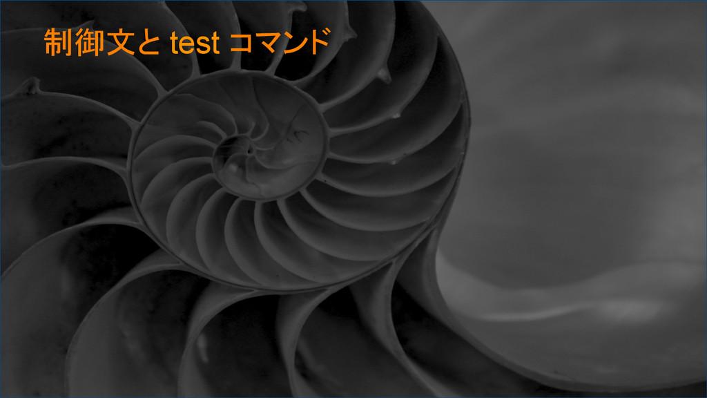制御文と test コマンド