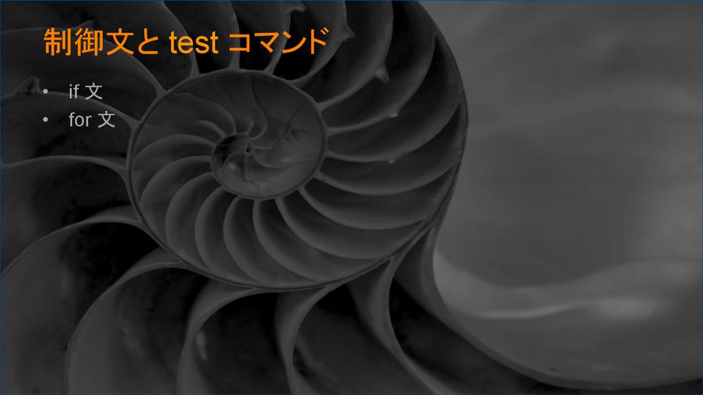 制御文と test コマンド • if 文 • for 文