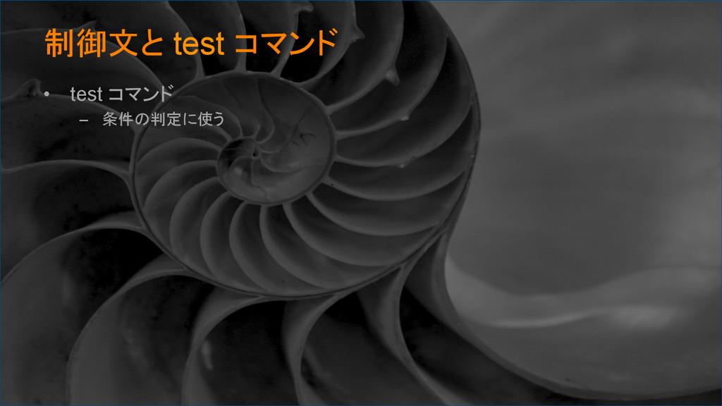 制御文と test コマンド • test コマンド – 条件の判定に使う