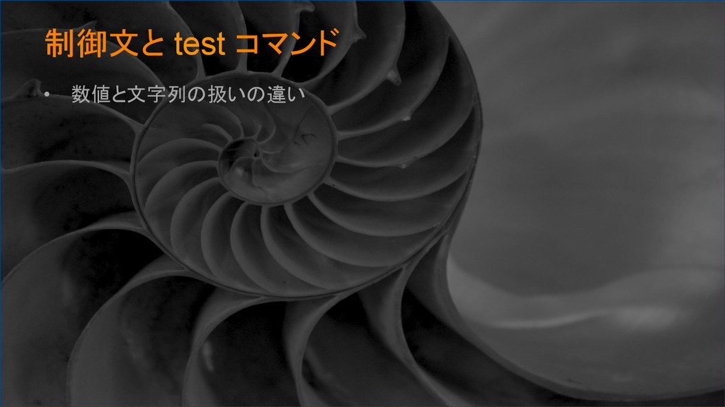 制御文と test コマンド • 数値と文字列の扱いの違い