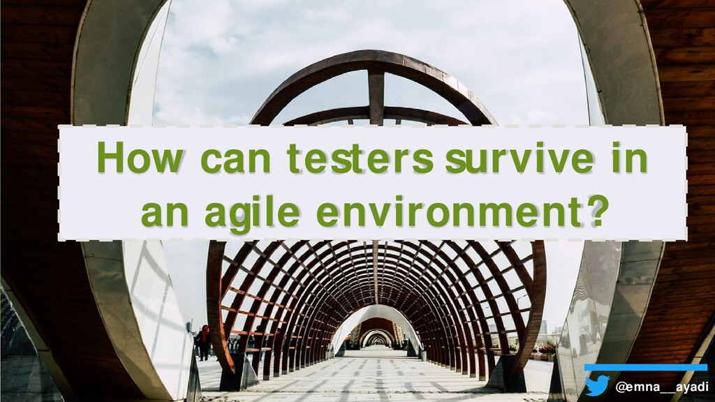 How can testers survive in an agile environment...