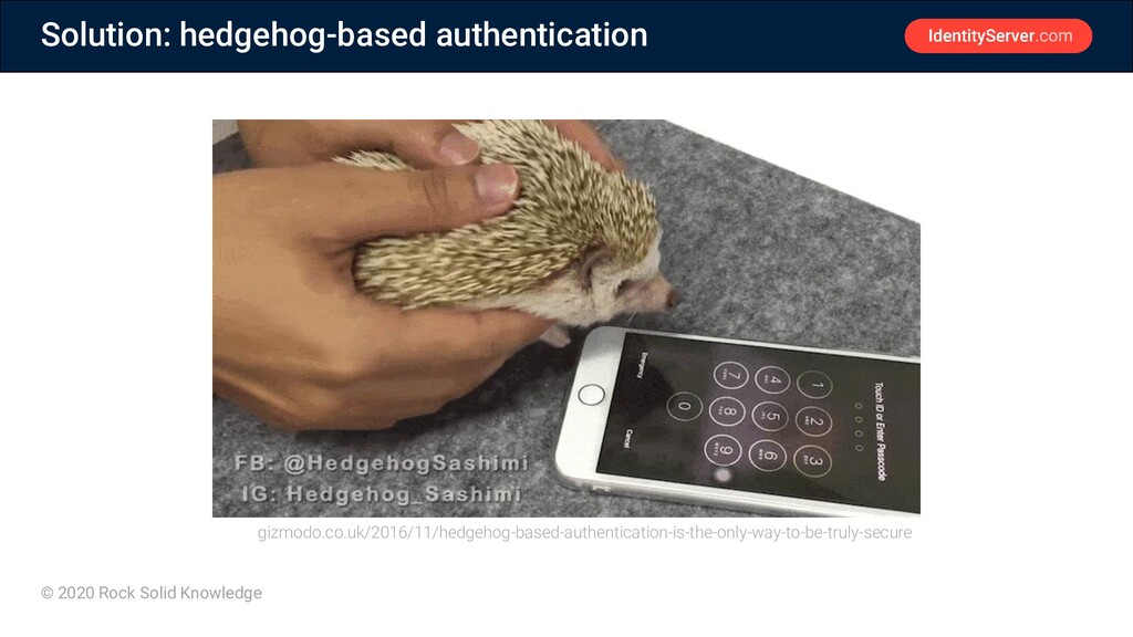 © 2020 Rock Solid Knowledge Solution: hedgehog-...