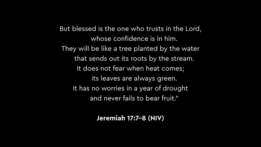But blessed is the one who trusts in the Lord, ...