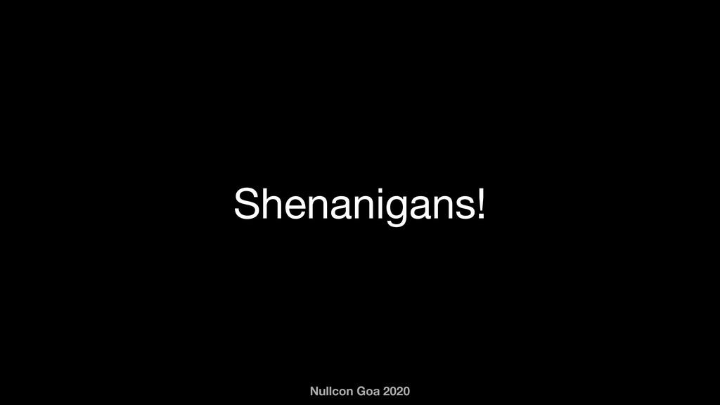 Nullcon Goa 2020 Shenanigans!