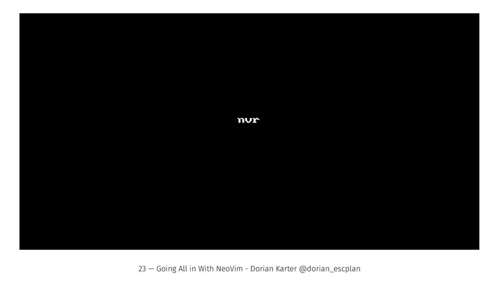 23 — Going All in With NeoVim - Dorian Karter @...