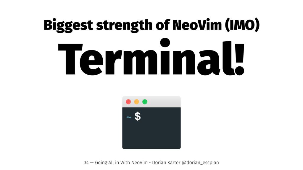Biggest strength of NeoVim (IMO) Terminal! 34 —...
