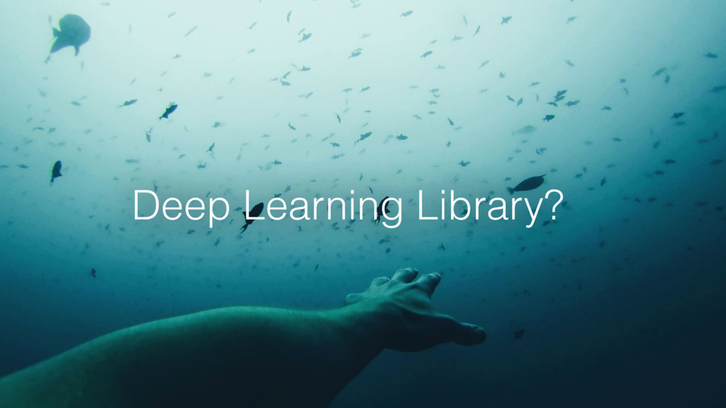 Deep Learning Library?