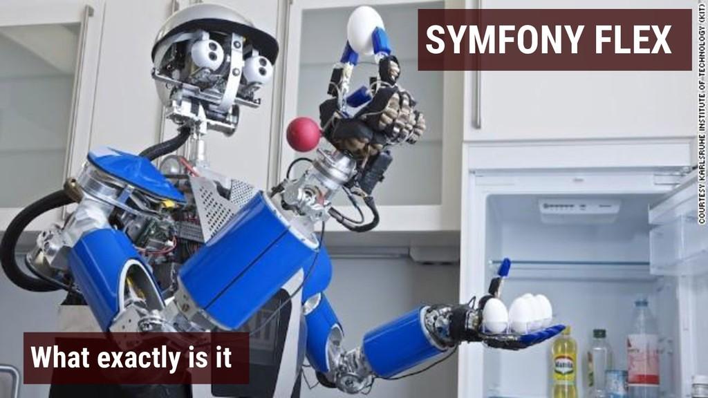 SYMFONY FLEX What exactly is it