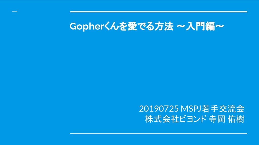 Gopherくんを愛でる方法 ~入門編~ 20190725 MSPJ若手交流会 株式会社ビヨン...