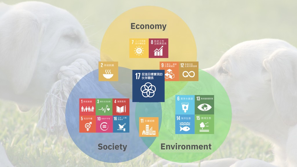 Economy Society Environment