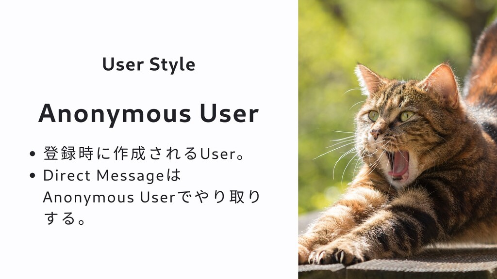 User Style Anonymous User 登録時に作成されるUser。 Direct...