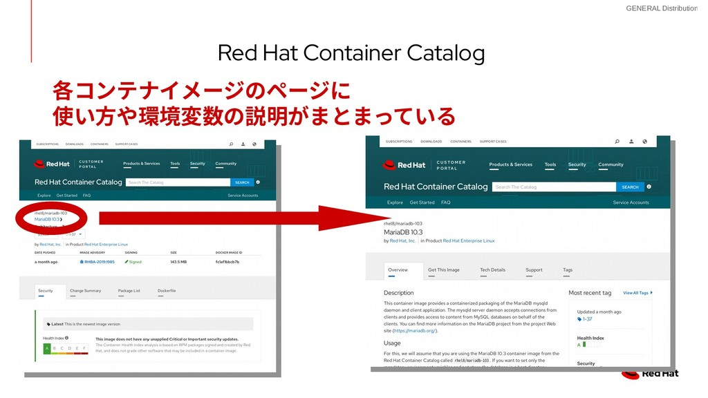 13 GENERAL Distribution Red Hat Container Catal...