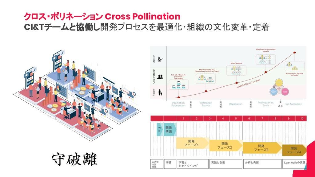 クロス・ポリネーション Cross Pollination CI&Tチームと協働し開発プロセス...