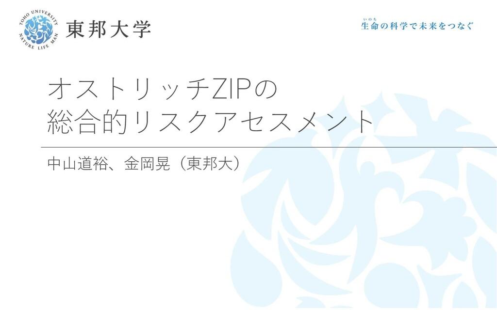 オストリッチZIPの 総合的リスクアセスメント 中山道裕、金岡晃(東邦大)