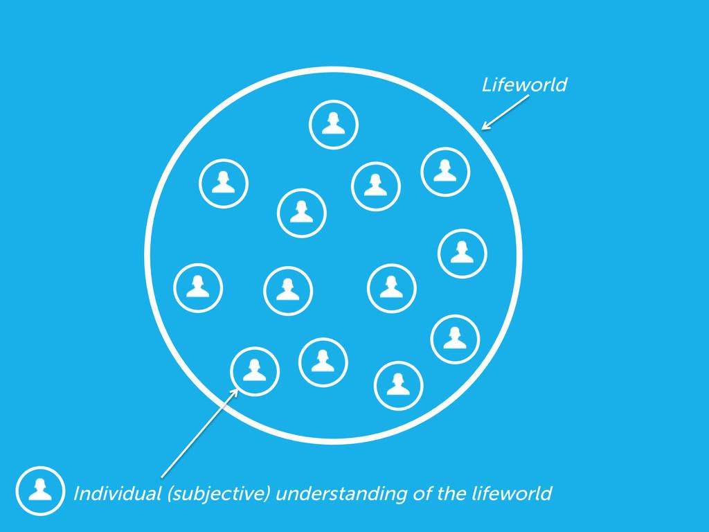 Individual (subjective) understanding of the li...
