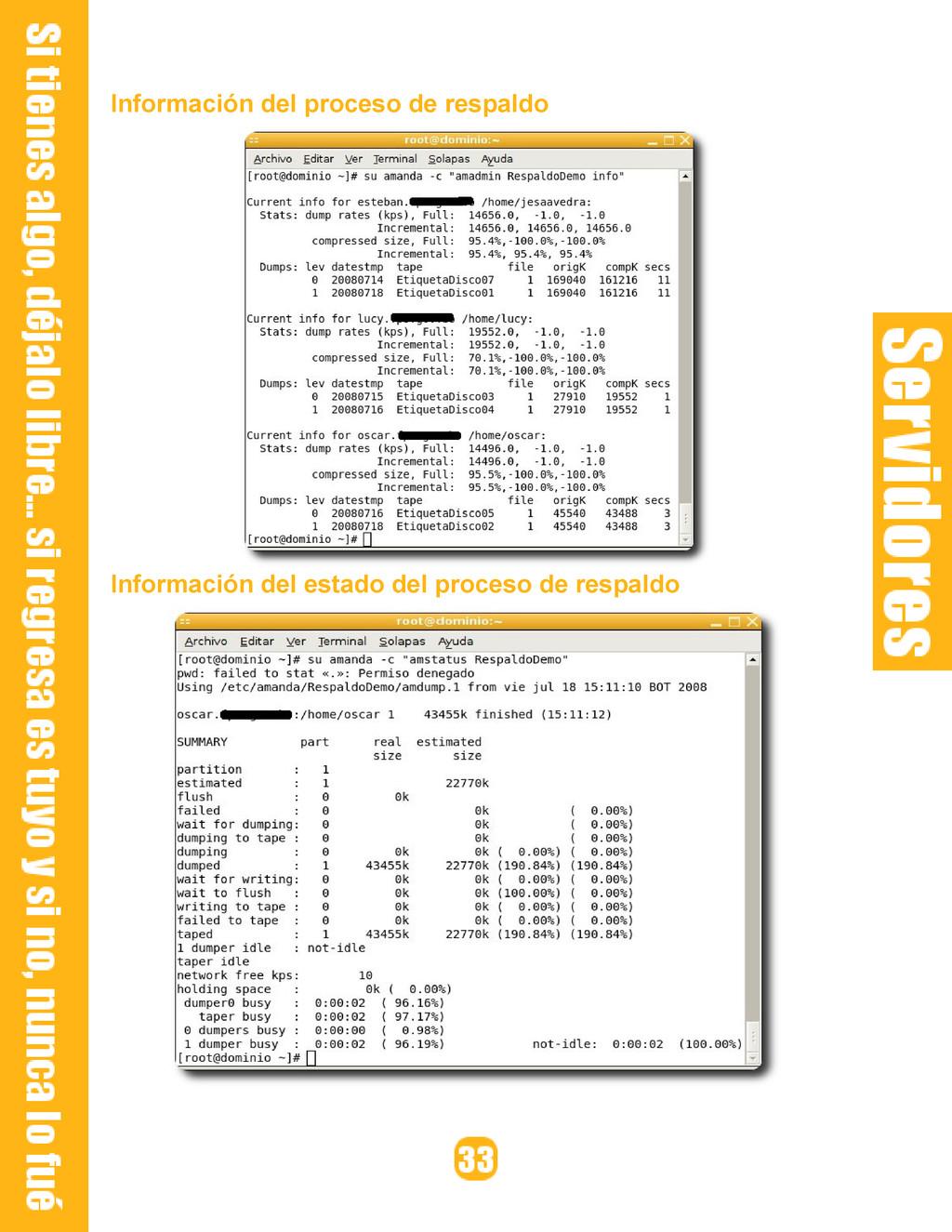 Información del proceso de respaldo Información...