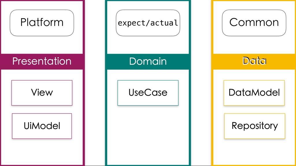 Data Domain Presentation Platform Common expect...