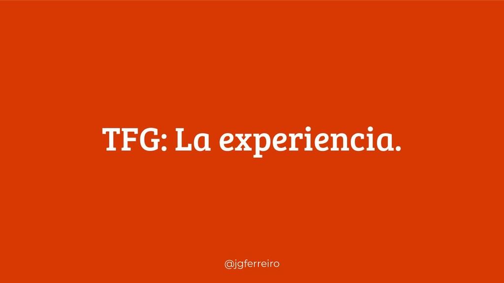 @jgferreiro TFG: La experiencia.
