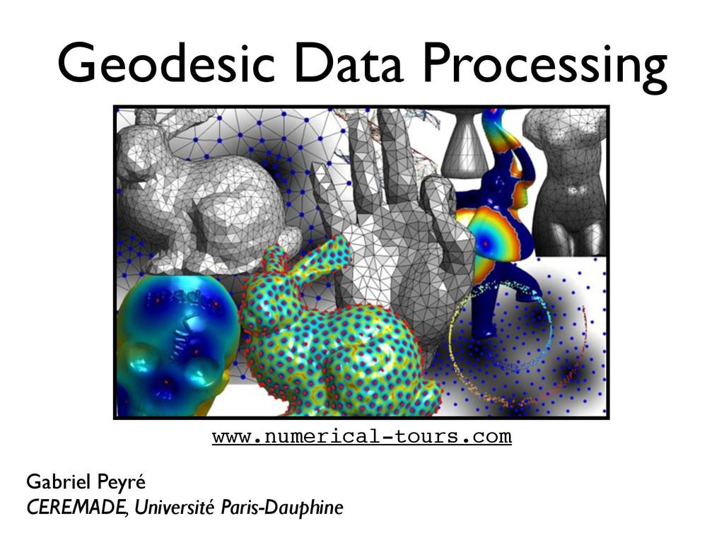 Geodesic Data Processing Gabriel Peyré CEREMADE...
