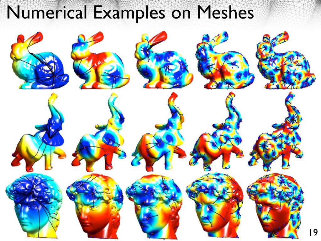 Numerical Examples on Meshes 19