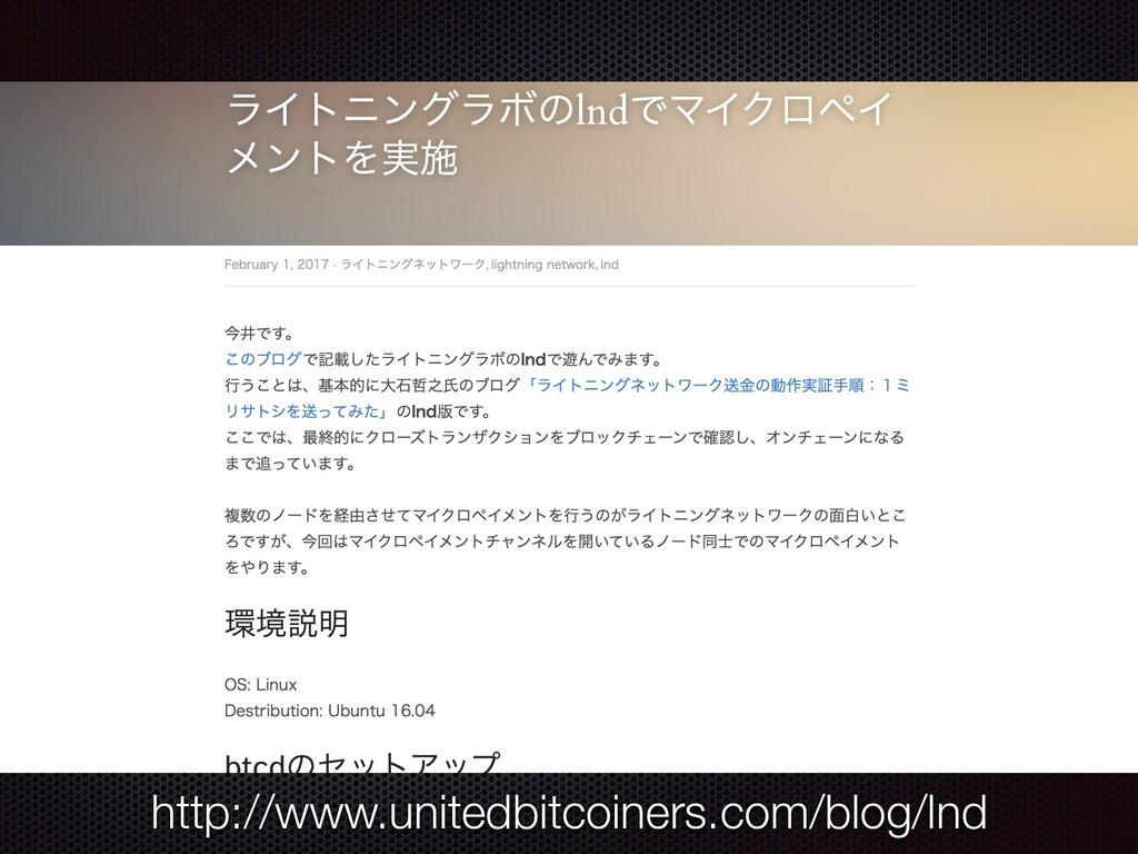 http://www.unitedbitcoiners.com/blog/lnd