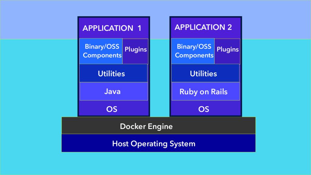 APPLICATION 1 OS Java Utilities Binary/OSS Comp...