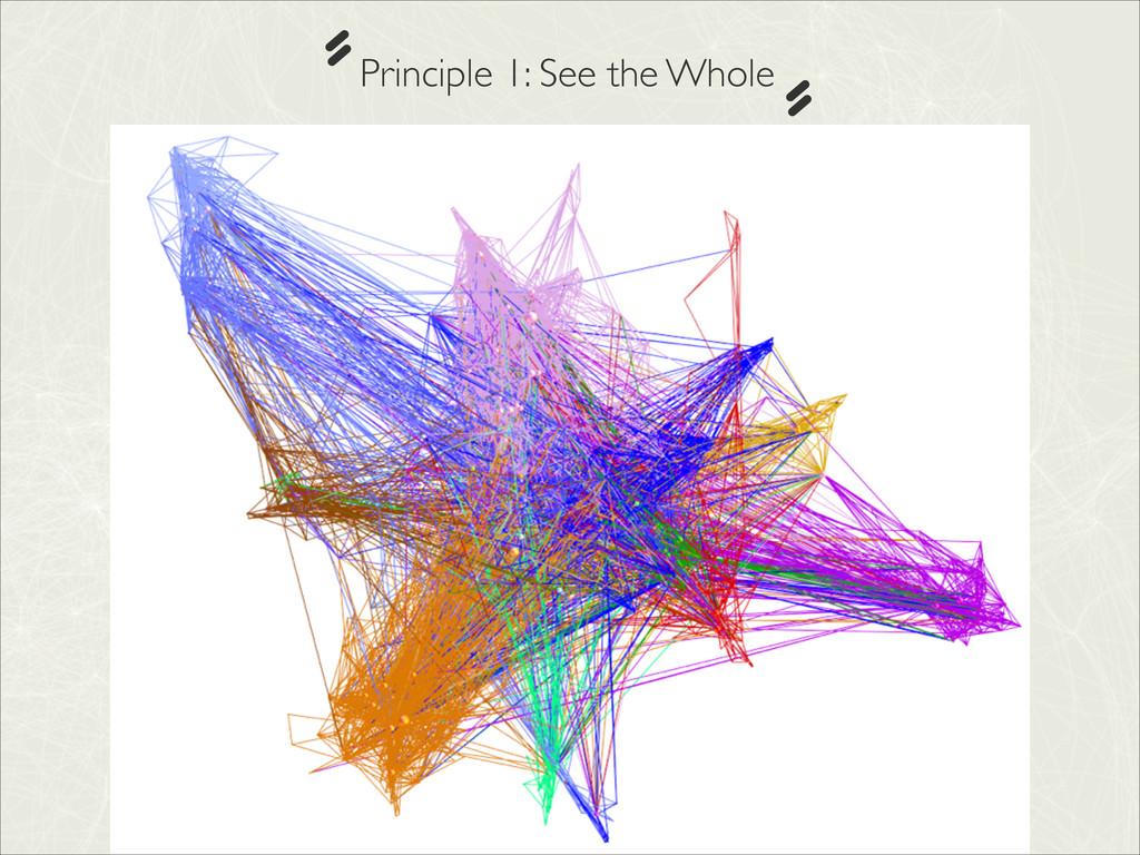 Principle 1: See the Whole