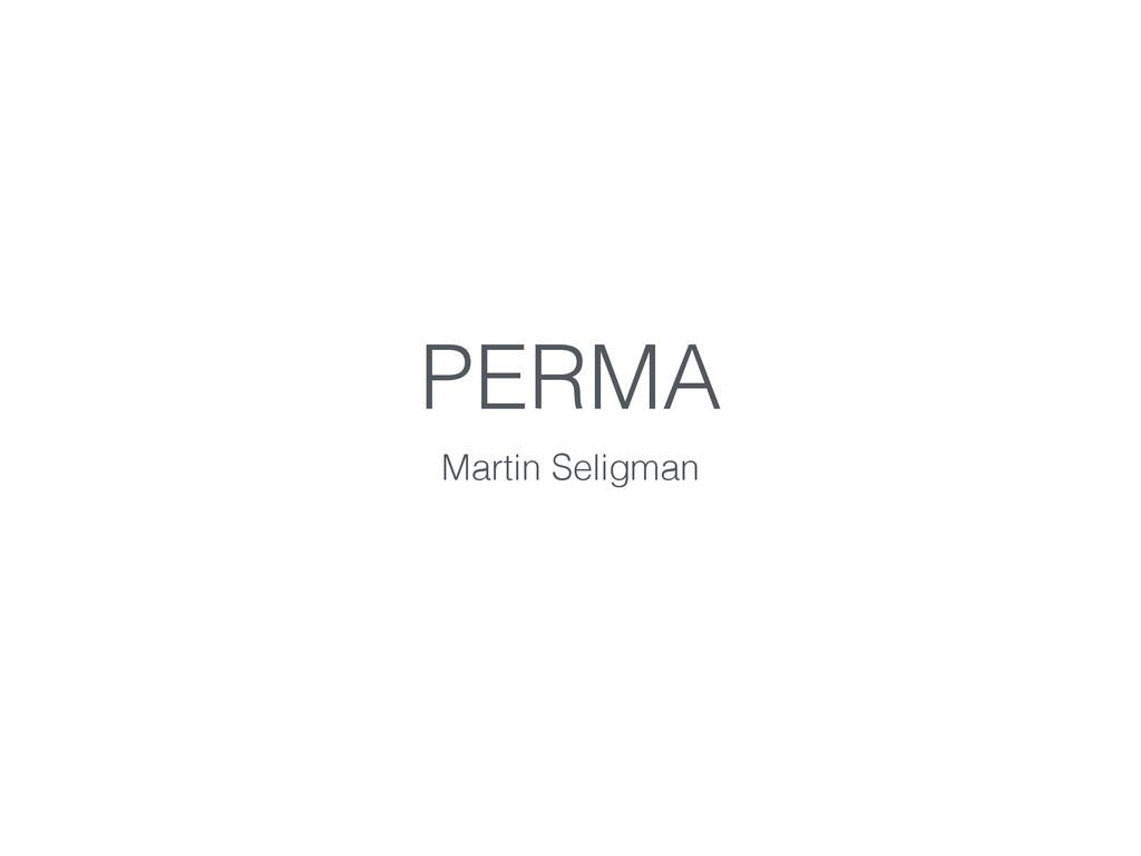 PERMA Martin Seligman