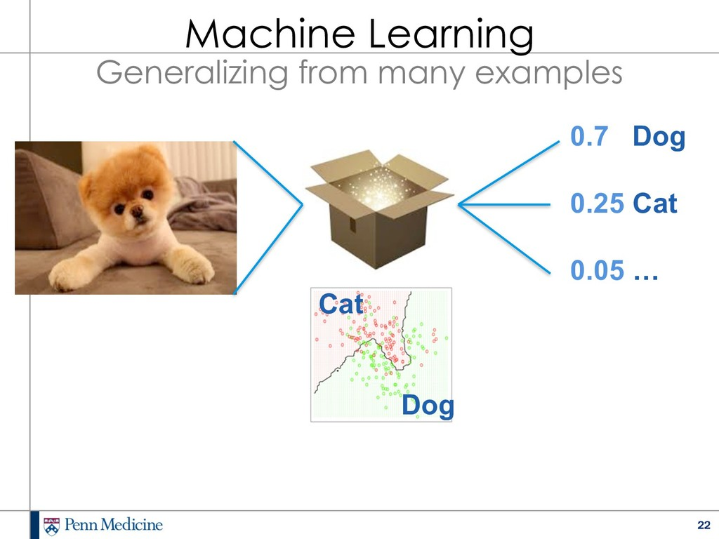 22 0.7 Dog 0.25 Cat 0.05 … Cat Dog Machine Lear...