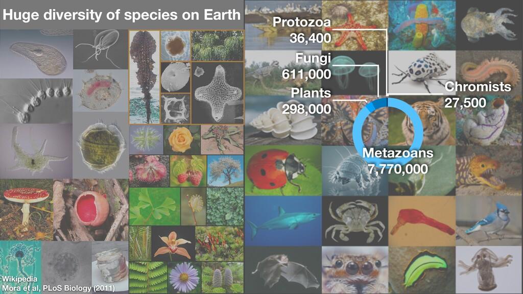 Wikipedia Mora et al, PLoS Biology (2011) Chrom...