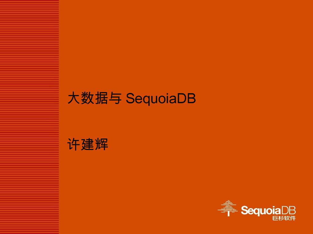 大数据与 SequoiaDB 许建辉