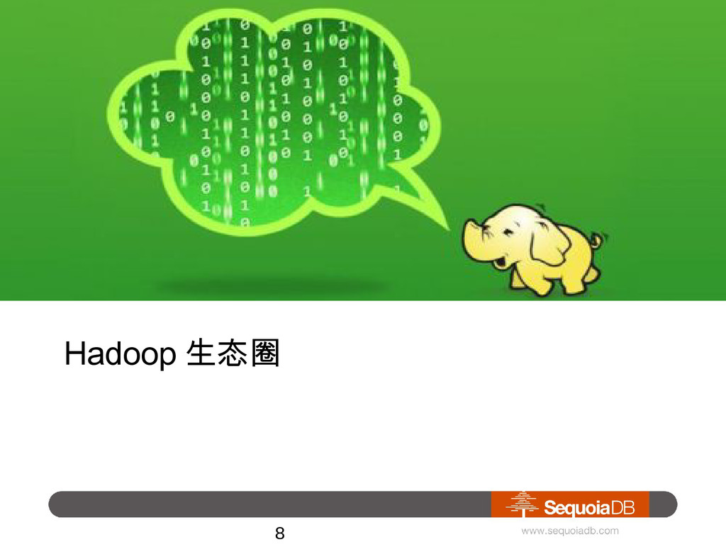 Hadoop 生态圈 • Big Data Platform 8