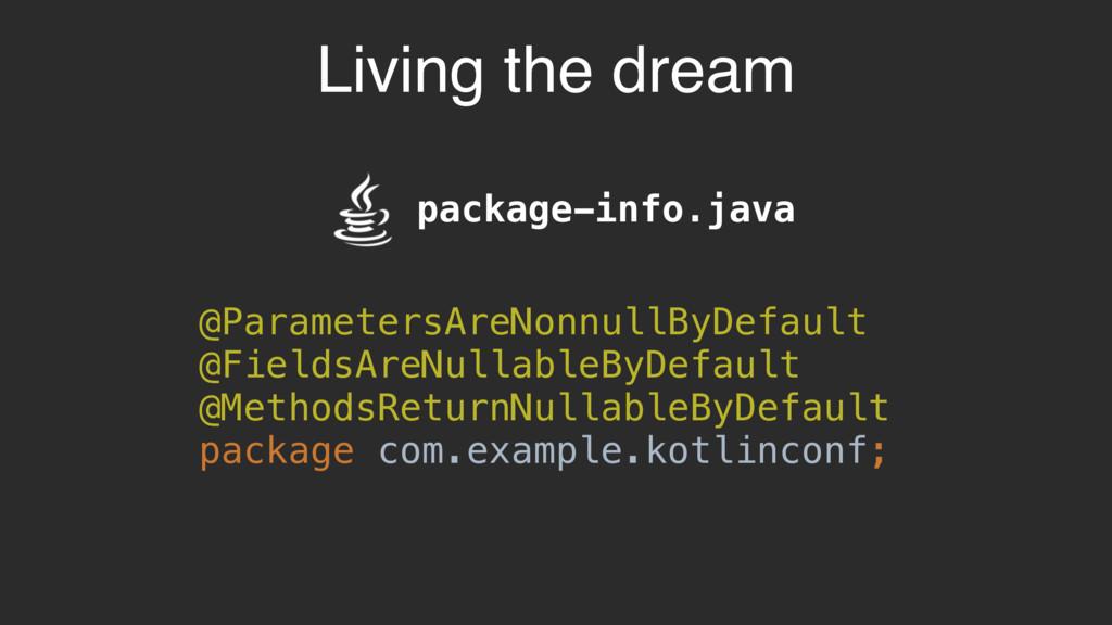 Living the dream package-info.java @ParametersA...