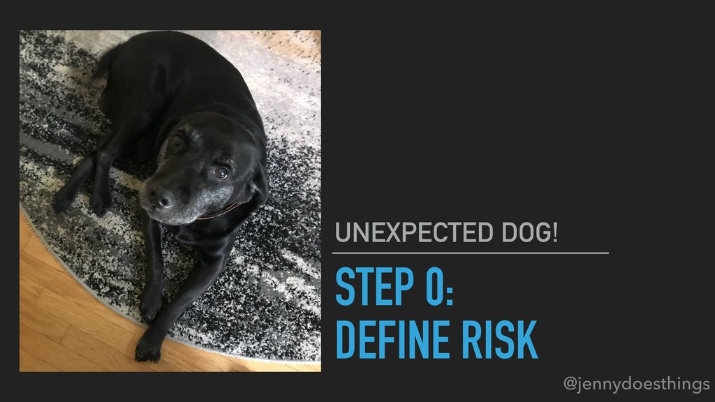 STEP 0: DEFINE RISK UNEXPECTED DOG! @jennydoest...