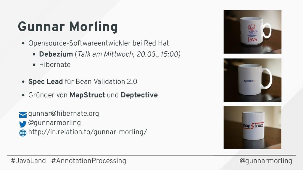 Gunnar Morling Gunnar Morling Opensource-Softwa...