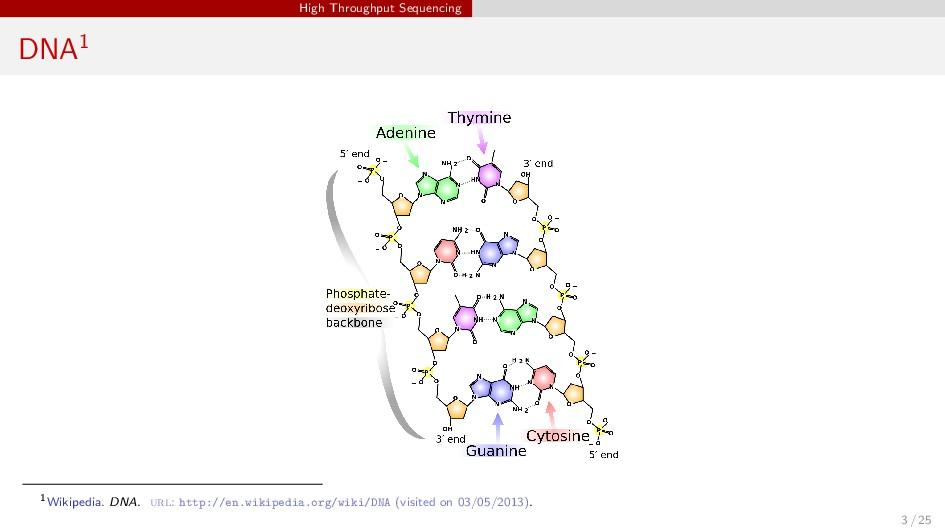 High Throughput Sequencing DNA1 1Wikipedia. DNA...
