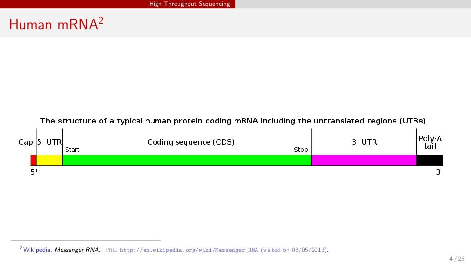 High Throughput Sequencing Human mRNA2 2Wikiped...