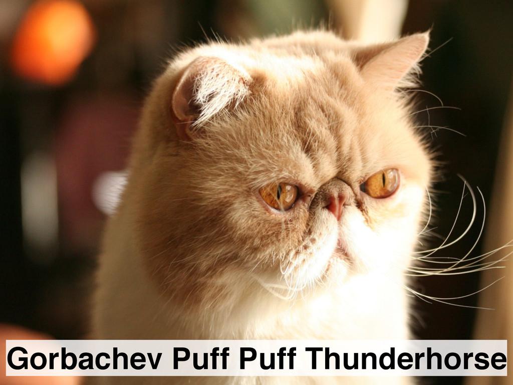 Gorbachev Puff Puff Thunderhorse