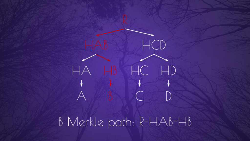 A B C D HAB HCD R B Merkle path: R-HAB-HB HA HB...