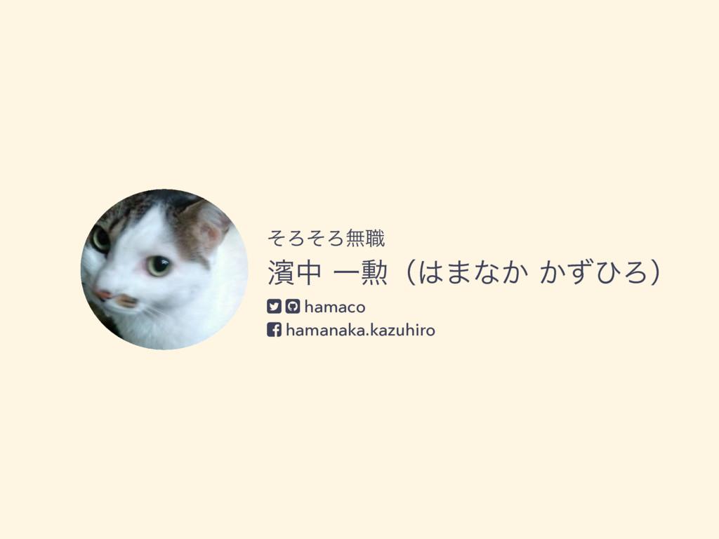 ͦΖͦΖແ৬ ᖛதҰ܄ʢ·ͳ͔͔ͣͻΖʣ hamaco hamanaka.kazuhi...